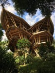Here are the Coolest Hotels in Indonesia that You Must Try